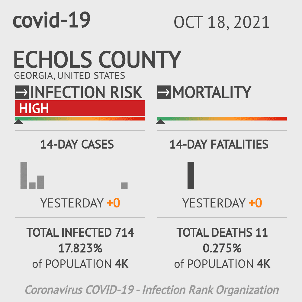 Echols County Coronavirus Covid-19 Risk of Infection on November 29, 2020