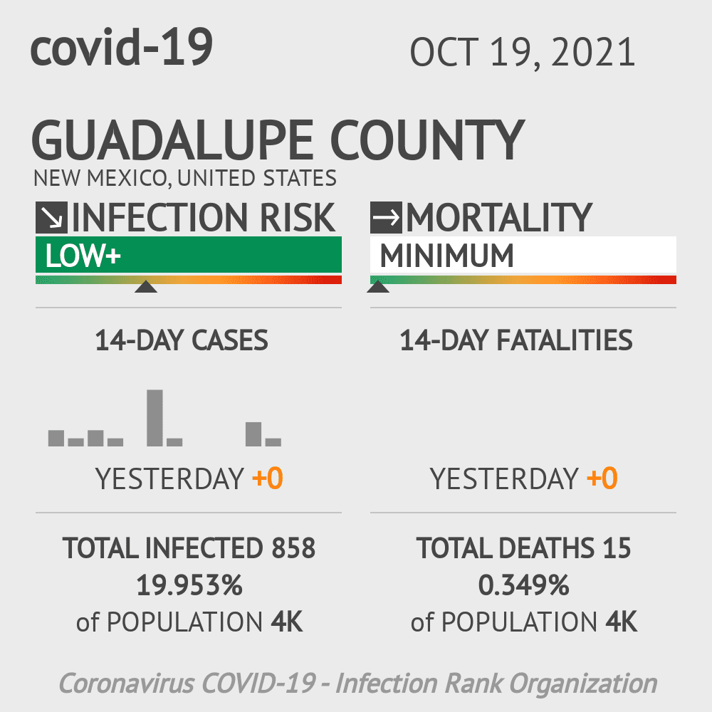 Guadalupe County Coronavirus Covid-19 Risk of Infection on March 23, 2021