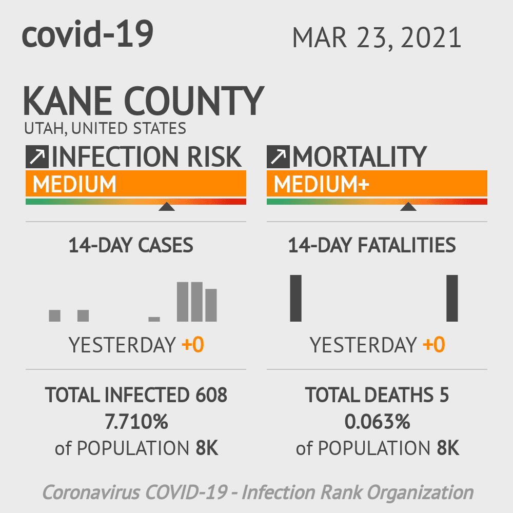 Kane County Coronavirus Covid-19 Risk of Infection on February 26, 2021